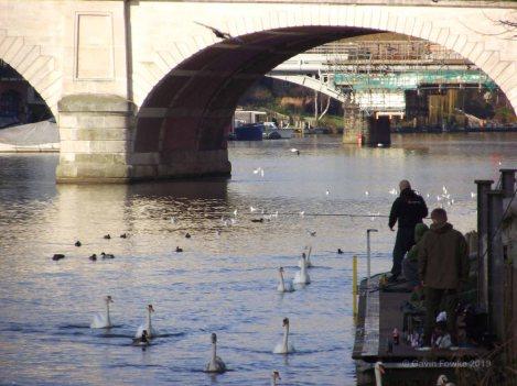 fishing in kingston