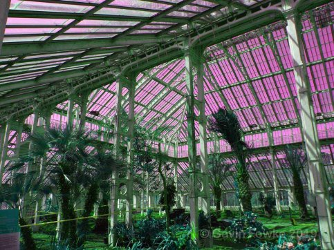 kew glasshouse