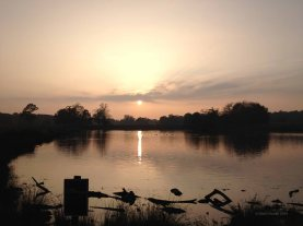 richmond park ponds