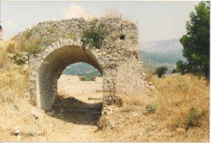 Image (83)